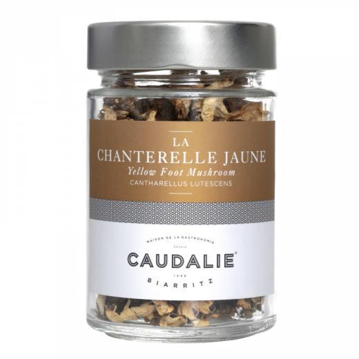Producteur Artisan - La Chanterelle Jaune Séchée - France - Champignons sauvages séchés : Chanterelles jaunes en 20 ou 500G - Landes France