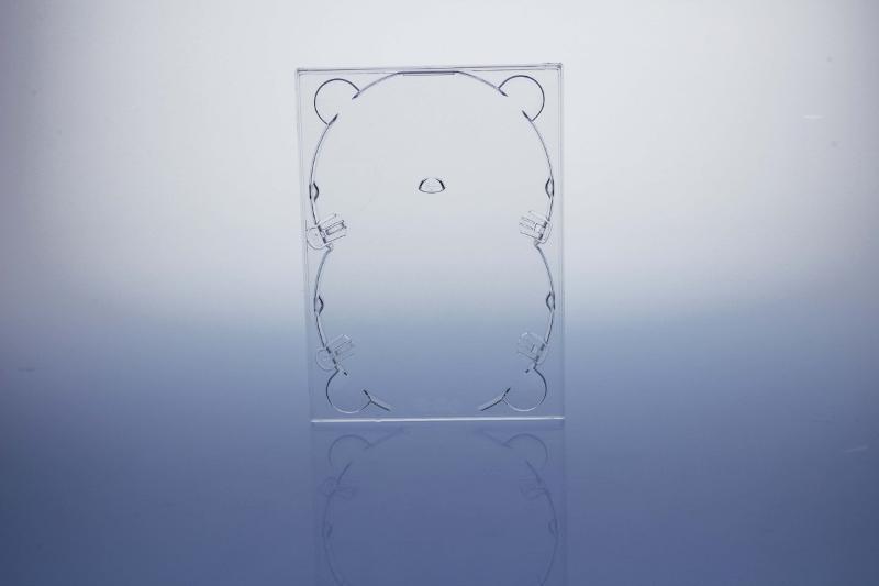 DVD Digitray für 2 Discs - transparent - kartoniert - Digitrays