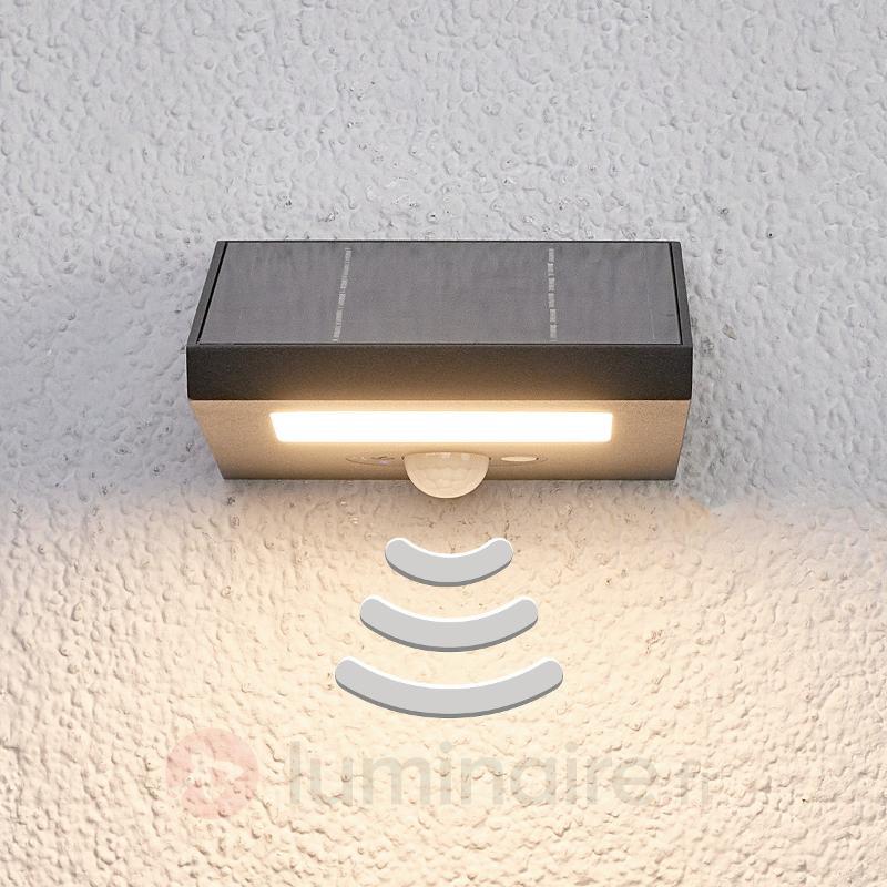 Applique d'extérieur solaire Felin, écl. vs le bas - Lampes solaires avec détecteur