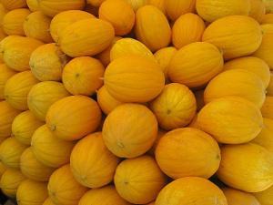 Melon d'eau - Fruit