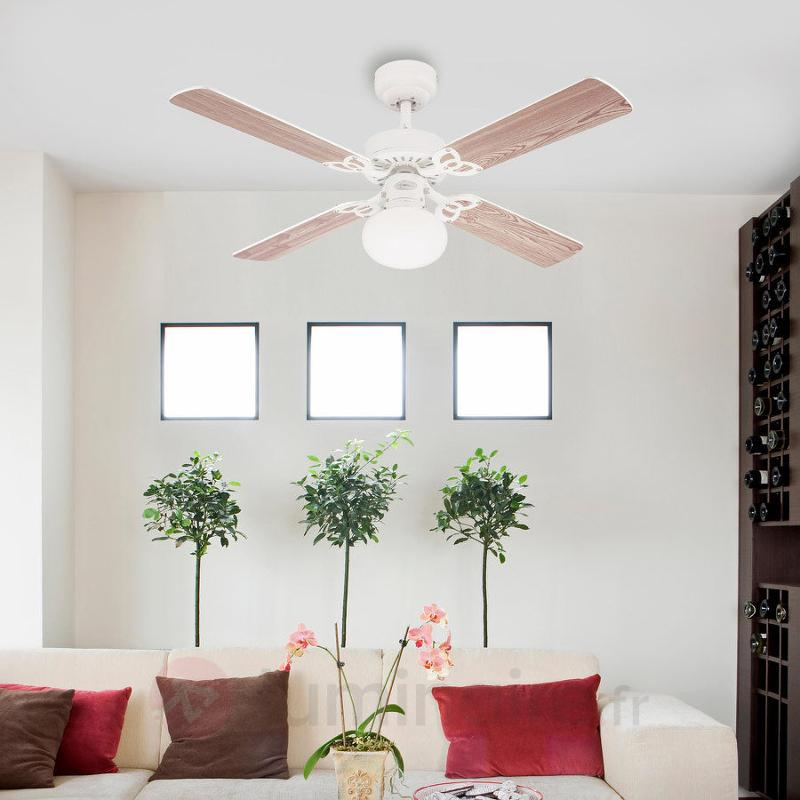 Ventilateur plafond Vegas lumineux, blanc/pin - Ventilateurs de plafond lumineux