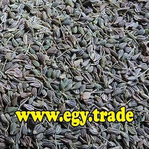 ANISE seeds - Egyptian ANISE tea