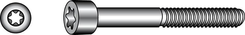 Socket head cap screws with TX-six lobe drive - Material A2 | A4