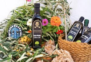 Extra Virgin Olive Oil in 500mL Dorica Bottle - Olive oil. Extra Virgin Olive oil in 500ml