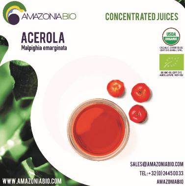 Organic Acerola Concentrated Juice - Clarified 65° - Try before purchase? Please contact us for free samples