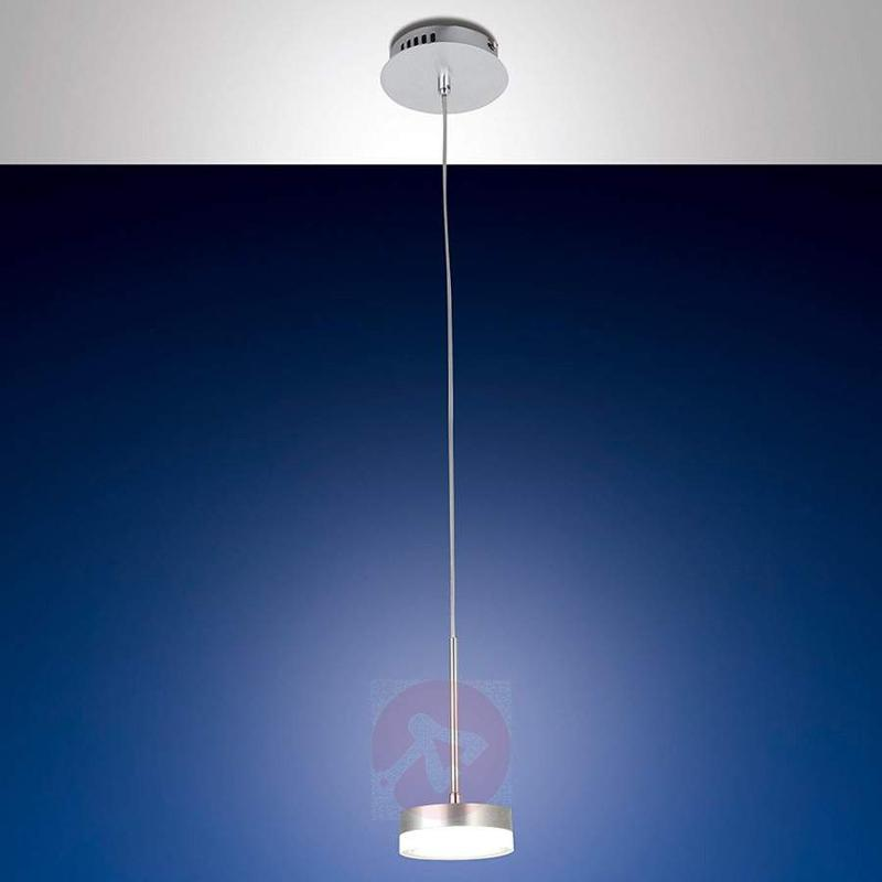 Dunk LED Hanging Light Single-Bulb - Pendant Lighting