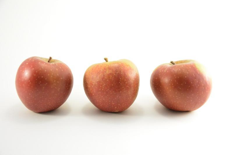 Apples - Boskoop