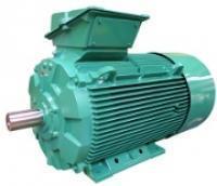 Asynchronous generators  - LSG - FLSG - PLSG 37 to 1000 kW