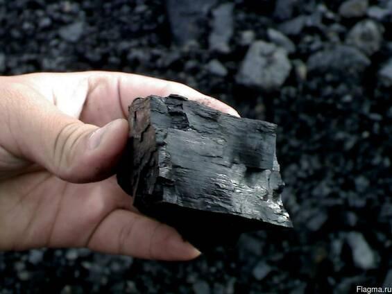 Birch Coal - Birch Charcoal