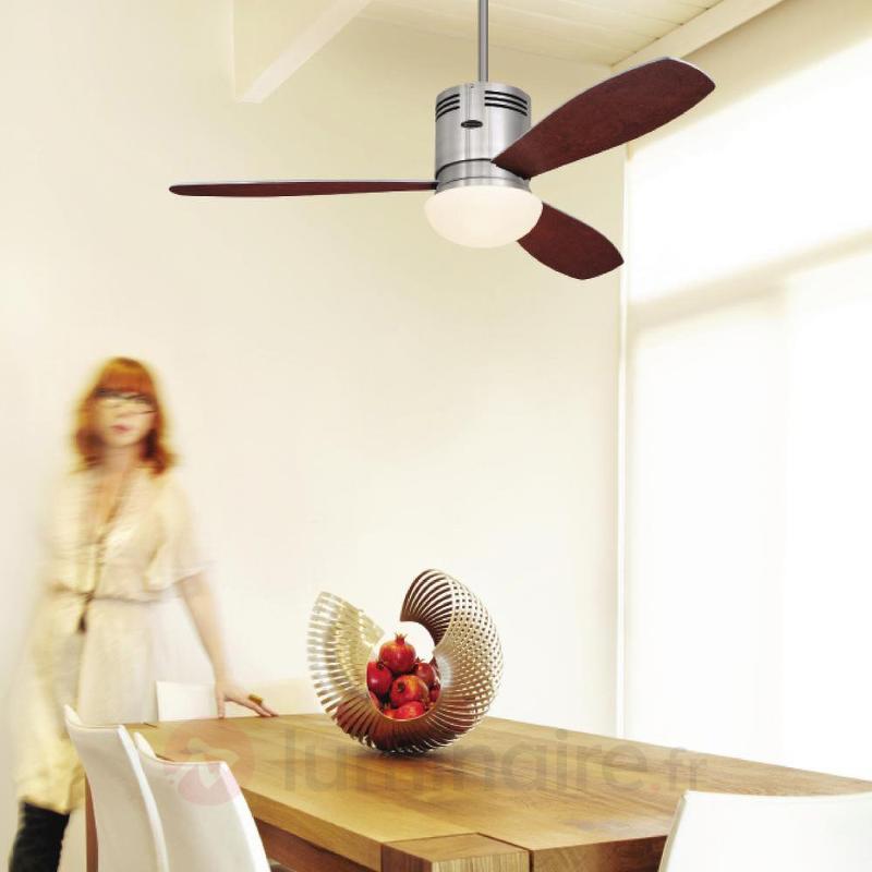 Ventilateur de plafond Combo bois et verre opale - Ventilateurs de plafond lumineux