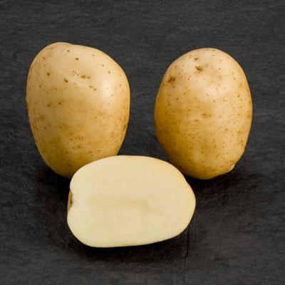 Potatoes - Yellow skin - PREMIERE