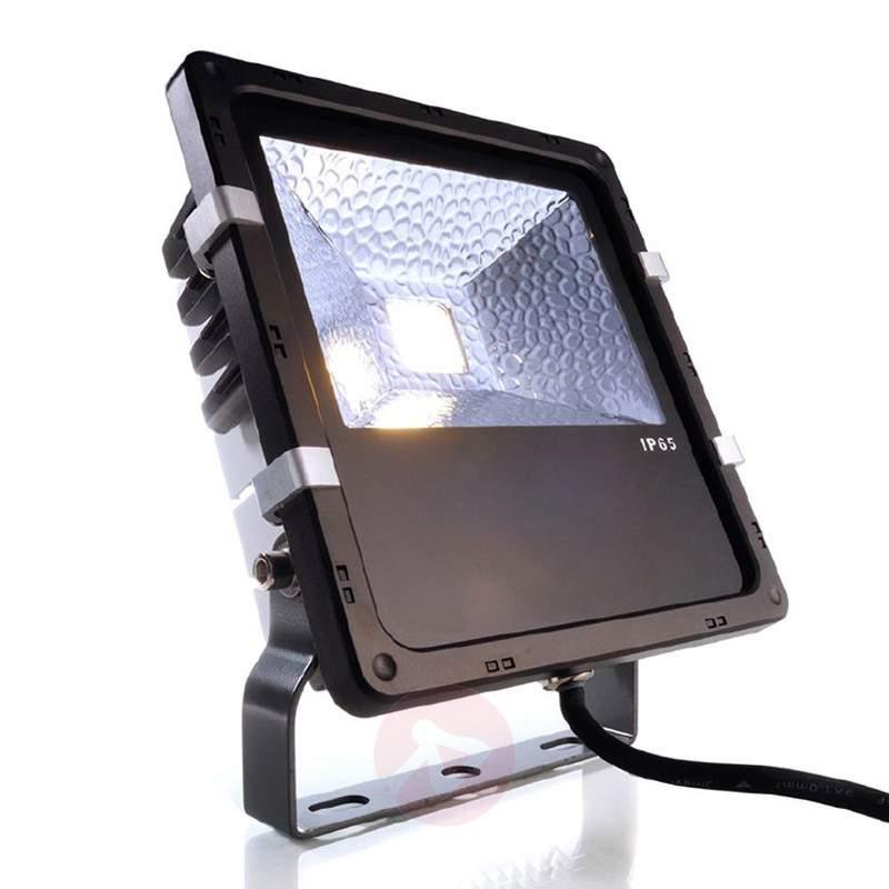 Powerful LED outdoor Flood spotlight - Outdoor Spotlights