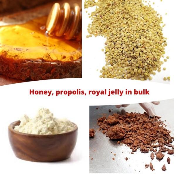 Honey Royal jelly Propolis Pollen in bulk - in bulk