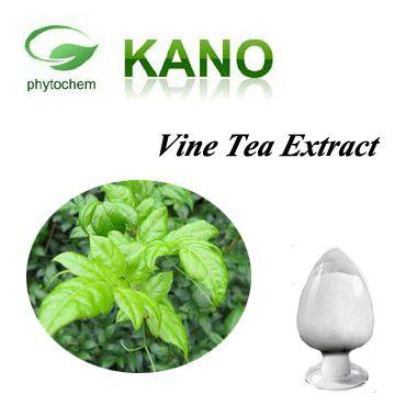 Vine Tea Extract - Vine Tea Extract 40%-98%Dihydromyricetin,DMY,DHM by HPLC