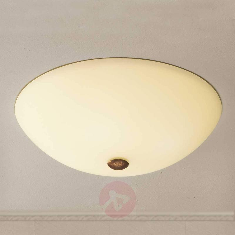 Simple ceiling light Federico - Ceiling Lights