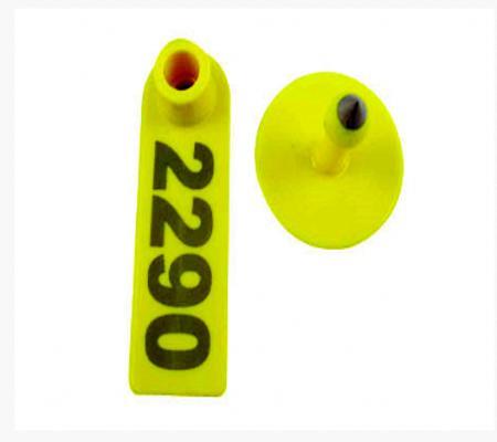Ear Identification - Ear Tags