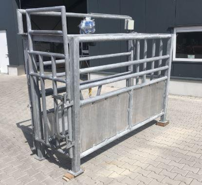 Cattle slaughter line 40-50 heads per day Ready for shipment - Cattle processing line