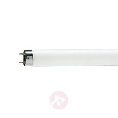 G13 T8 30W/76 Natura Split fluorescent bulb - light-bulbs