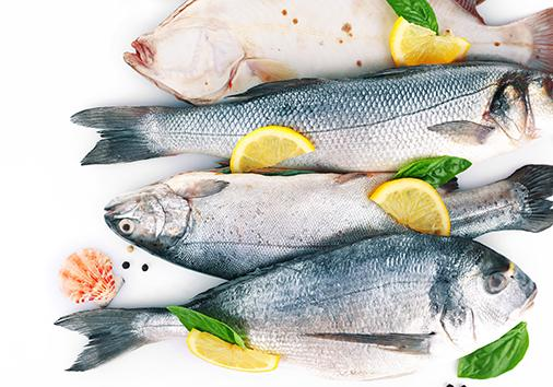 TWO-COLOR FILM FOR PELAGIC FISH - Packaging for seafood industry