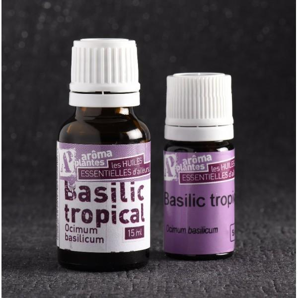 Huile essentielle de Basilic biologique - Huiles essentielles