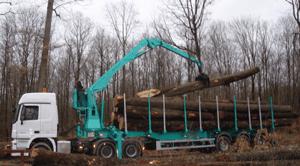 Grues forestières modèle 25 T