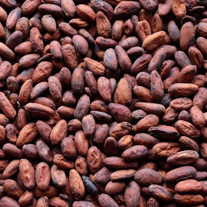 cocoa beans - Import- export