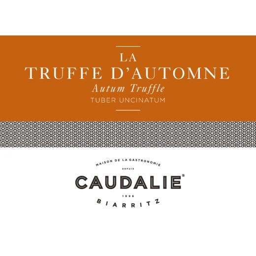 Producteur Artisan - La Truffe D'automne Fraîche - Truffe de Bourgogne, fraîche (Tuber Uncinatum /France) sachet 50G et +