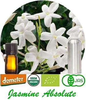 100% Pure Natural Jasmine Absolute - (organic & conventional) for Fragrance, Flavor, Cosmetics, Pharmaceutical, Aroma