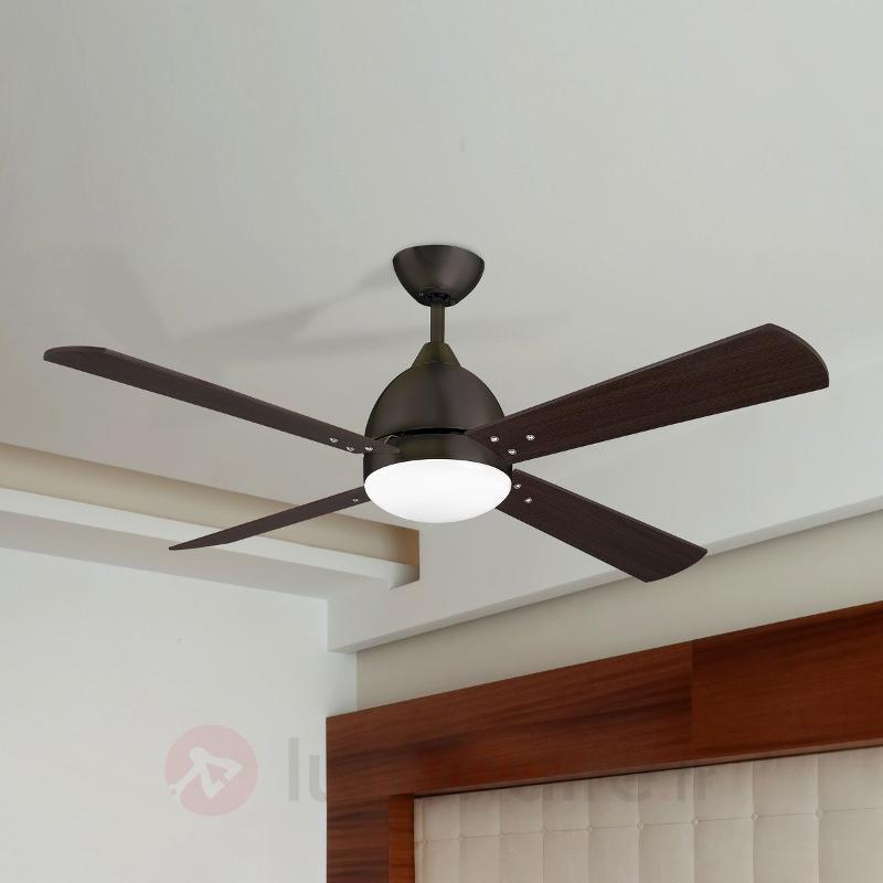 Ventilateur de plafond Borneo moderne brun - Ventilateurs de plafond modernes