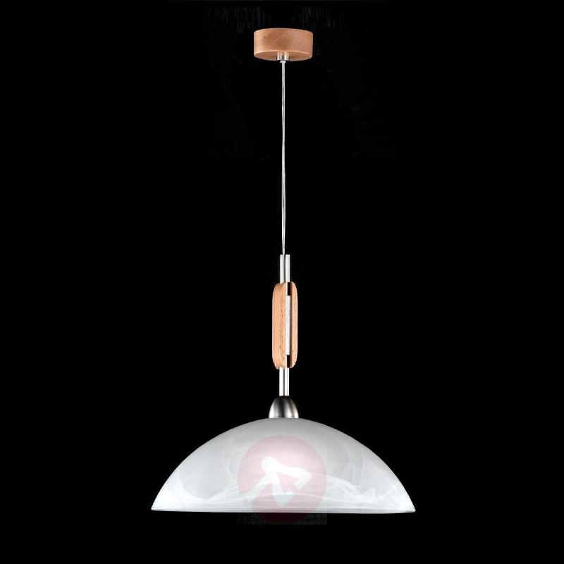 Pinza Hanging Light Modern - Pendant Lighting