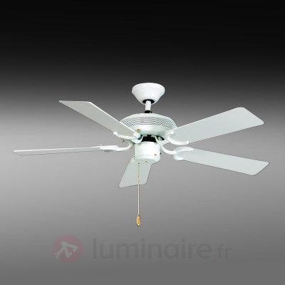 Ventilateur de plafond White-Eagle-Slimline 103 cm - Ventilateurs de plafond