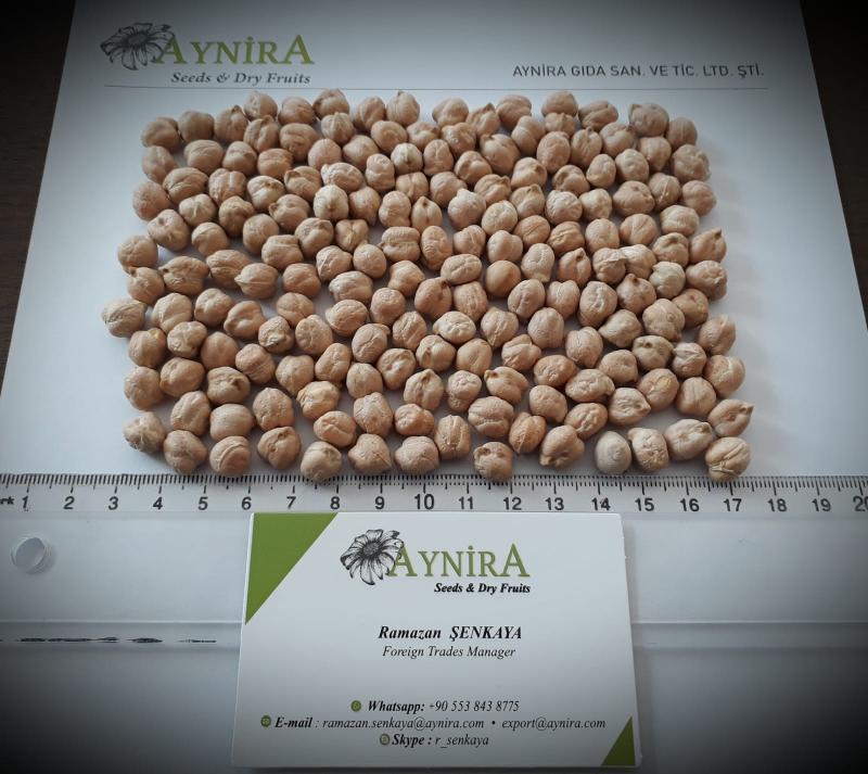 Turkish Origin Raw Chickpeas - Sortex Clean Chickpeas