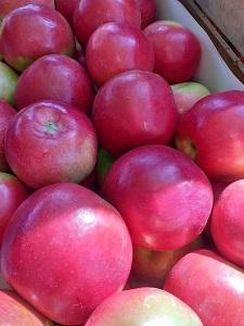 Яблоки - Македония