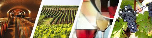Wine & Spirits - Services