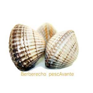 Berberecho Gallego
