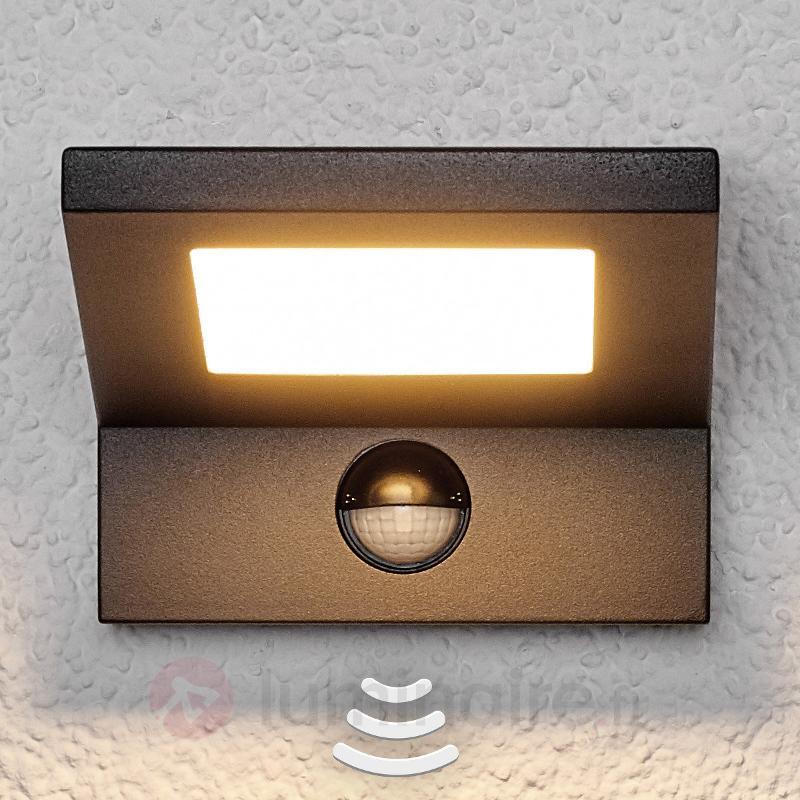 Applique extérieure LED Levvon à détecteur - Appliques d'extérieur LED