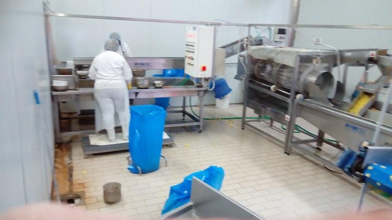 Frische Kartoffelaufbereitungsanlage -
