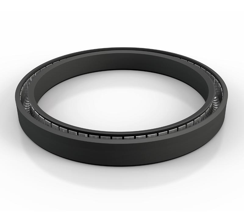 Rod Seals - Turcon® Variseal® M2S