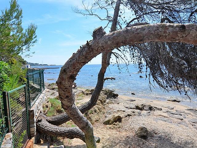 Seafront villa Sainte Maxime with private beach - Real Estate