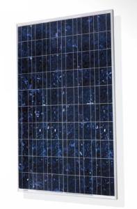 Panneaux solaires monocristallins neufs grade B 260W