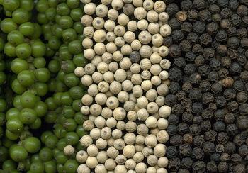 poivre blanc et noir