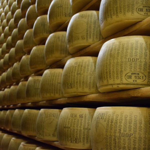 Ispezione, controllo e classificazione di forme di formaggio - La miglior soluzione per l'ispezione, controllo e classificazione di forme...