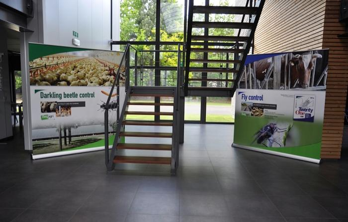 Matériel de promotion - display roll up stand up vitrine carton
