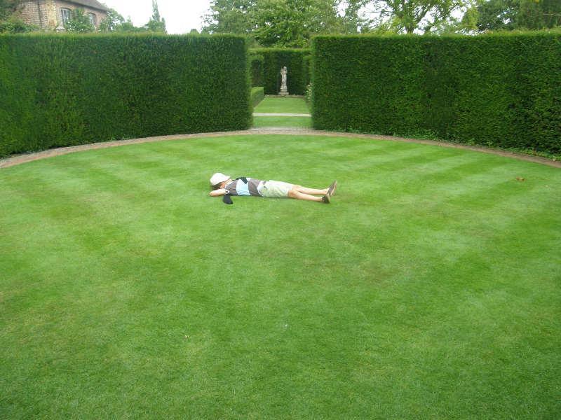 Suivi créatif de jardins thérapeutiques - Service