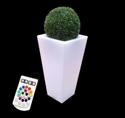Location de Vase lumineux + - null