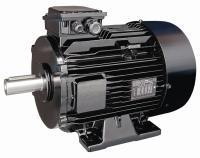 Three-phase induction motors controlled by an electronic drive - LSMV  0.18 to 132 kW