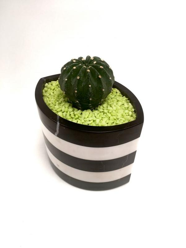 Marble-eye Pot-large Size-black White - null