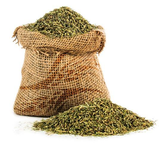 Cumin seeds - A Natural and healthy spice with captivating flavor used in  worldwide