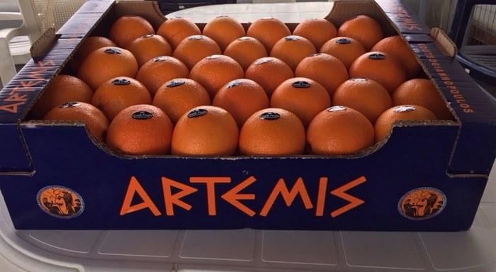 Oranges - Fresh and Delicious from Greece