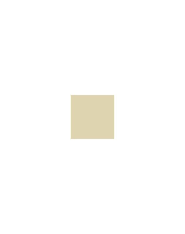 PP IVOIRE 1013 1KG - PATES PIGMENTAIRES